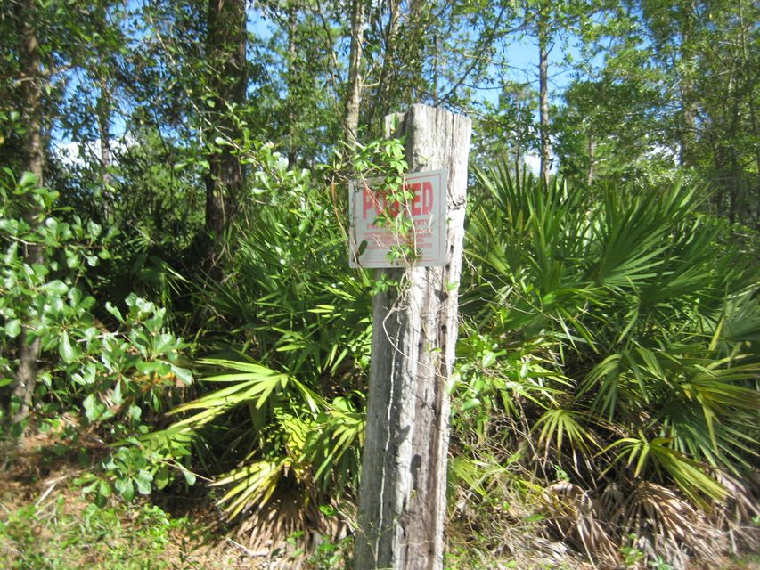 0 CATTAIL, MIDDLEBURG, FLORIDA 32068, ,Vacant land,For sale,CATTAIL,896116
