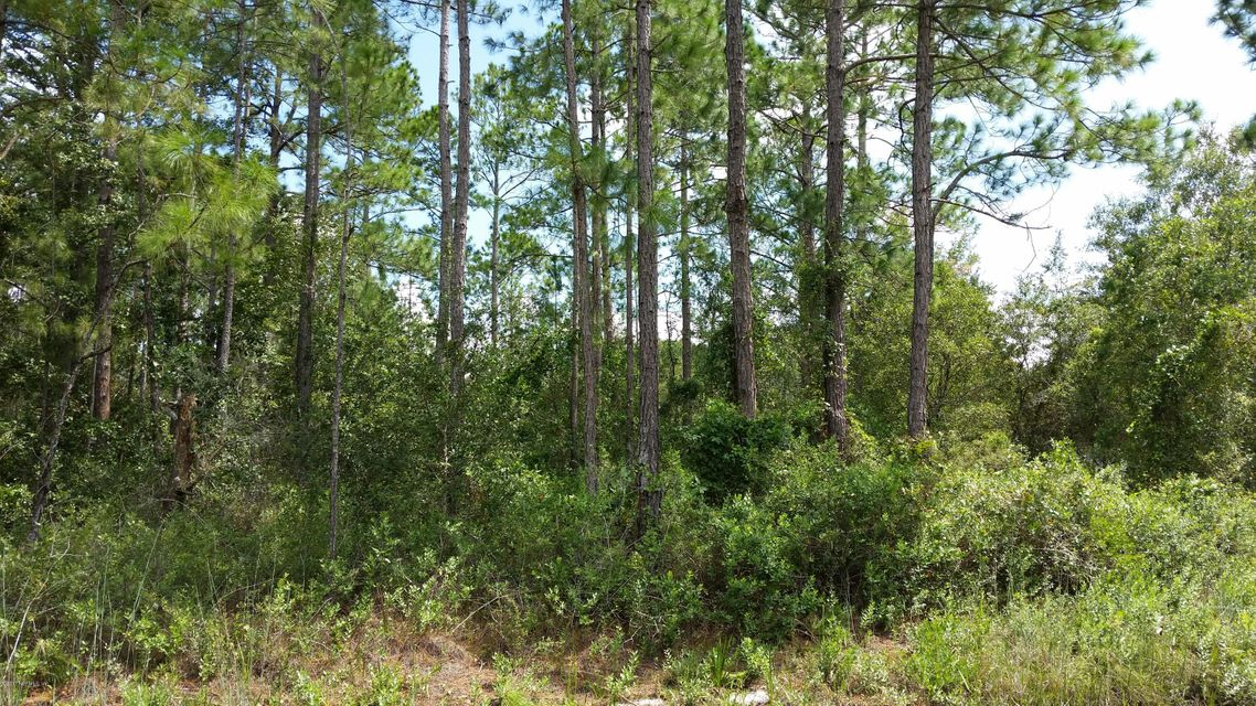 4780 INEZ, HASTINGS, FLORIDA 32145, ,Vacant land,For sale,INEZ,901172