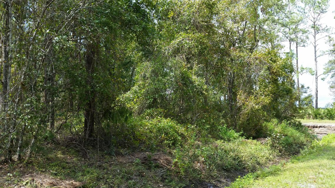 9615 LIGHT, HASTINGS, FLORIDA 32145, ,Vacant land,For sale,LIGHT,901207