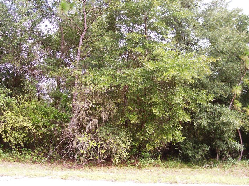 0000 MICHEAL, INTERLACHEN, FLORIDA 32148, ,Vacant land,For sale,MICHEAL,911695