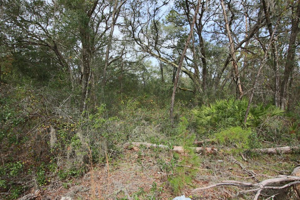 COUNTY ROAD 315, KEYSTONE HEIGHTS, FLORIDA 32656, ,Vacant land,For sale,COUNTY ROAD 315,911701