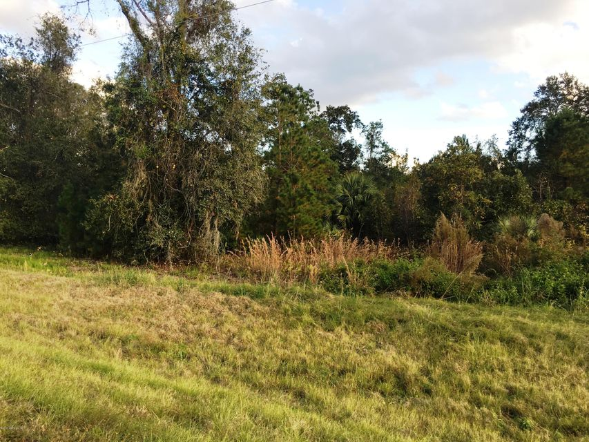 634 HIGHWAY 17, SAN MATEO, FLORIDA 32187, ,Vacant land,For sale,HIGHWAY 17,912114