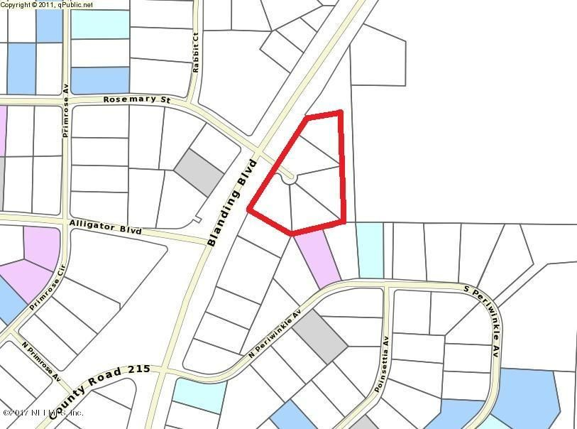 BLANDING, MIDDLEBURG, FLORIDA 32068, ,Vacant land,For sale,BLANDING,912160
