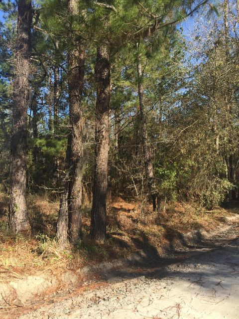 0 41ST, LAWTEY, FLORIDA 32058, ,Vacant land,For sale,41ST,916567