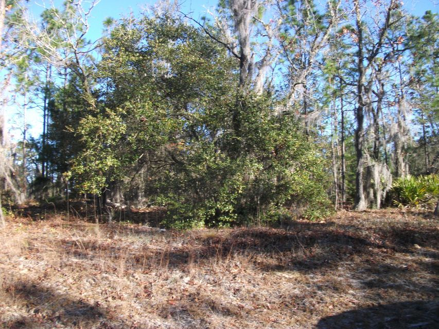 7217 CARDINAL, FLORAHOME, FLORIDA 32140, ,Vacant land,For sale,CARDINAL,916765
