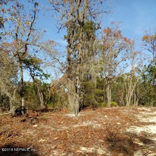 114 EDGELINE, SATSUMA, FLORIDA 32189, ,Vacant land,For sale,EDGELINE,915422
