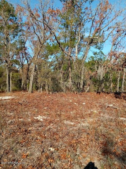 112 EDGELINE, SATSUMA, FLORIDA 32189, ,Vacant land,For sale,EDGELINE,915427