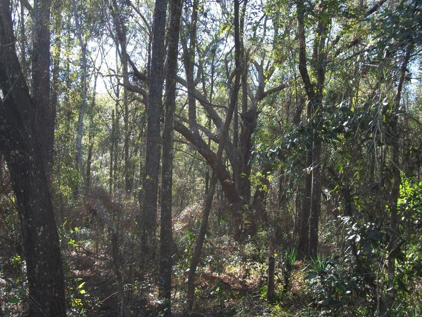0 50TH, KEYSTONE HEIGHTS, FLORIDA 32656, ,Vacant land,For sale,50TH,916891