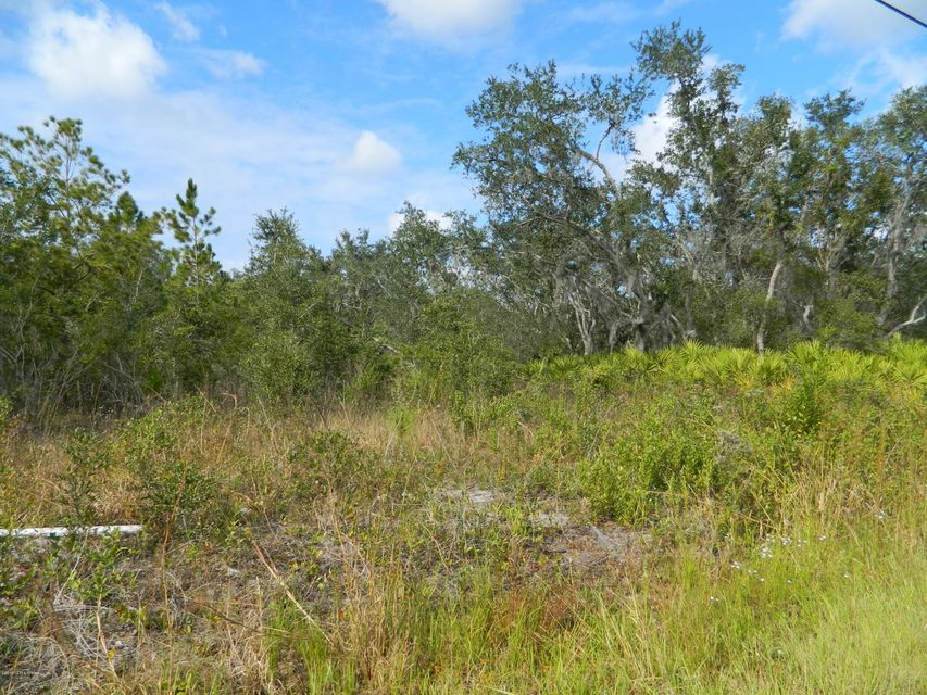 00 HWY 17, SATSUMA, FLORIDA 32189, ,Vacant land,For sale,HWY 17,917004