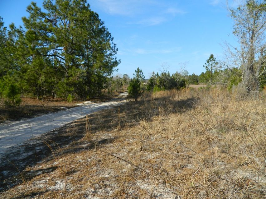 ORANGE BLOSSOM, POMONA PARK, FLORIDA 32181, ,Vacant land,For sale,ORANGE BLOSSOM,918290