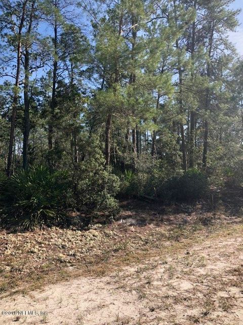 106 OCALA, GEORGETOWN, FLORIDA 32112, ,Vacant land,For sale,OCALA,918321