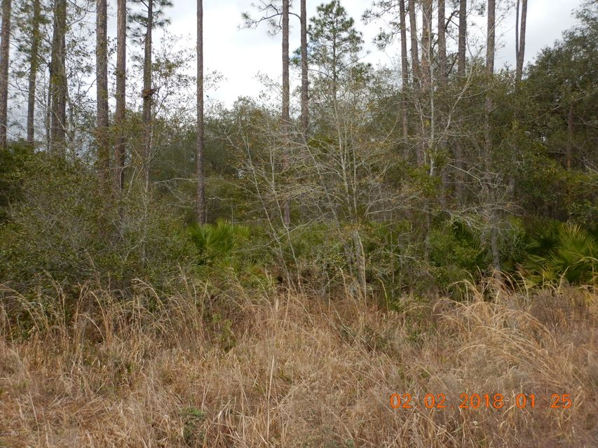 CLAY, INTERLACHEN, FLORIDA 32148, ,Vacant land,For sale,CLAY,919478