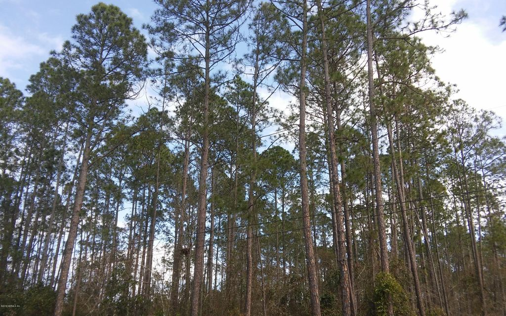 2409 COSMOS, MIDDLEBURG, FLORIDA 32068, ,Vacant land,For sale,COSMOS,919637