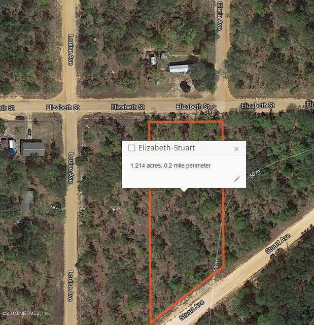 111 ELIZABETH, INTERLACHEN, FLORIDA 32148, ,Vacant land,For sale,ELIZABETH,920360