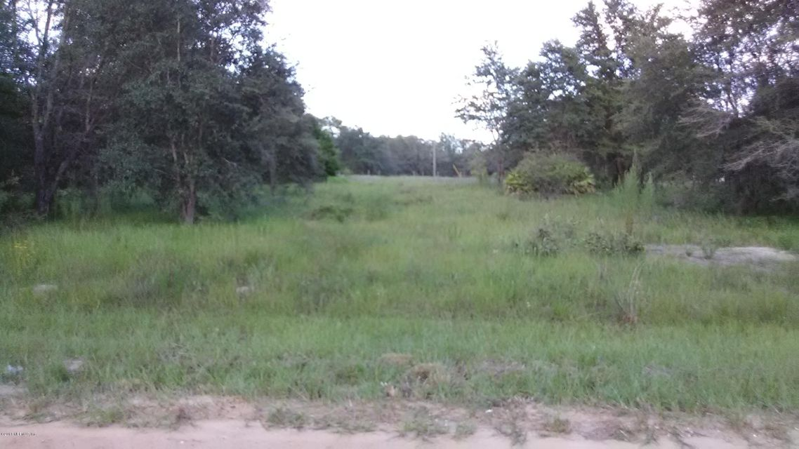 602 LENORE, INTERLACHEN, FLORIDA 32148, ,Vacant land,For sale,LENORE,920363