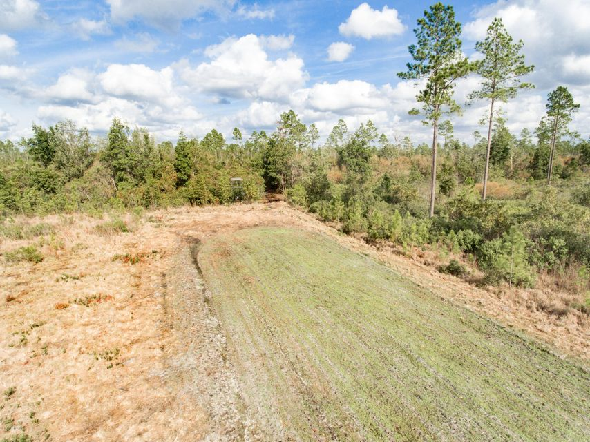 000 SPANISH CREEK, FOLKSTON, GEORGIA 31537, ,Vacant land,For sale,SPANISH CREEK,921200