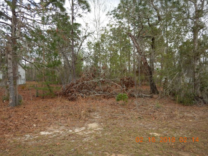 GRENOCK, INTERLACHEN, FLORIDA 32148, ,Vacant land,For sale,GRENOCK,921627