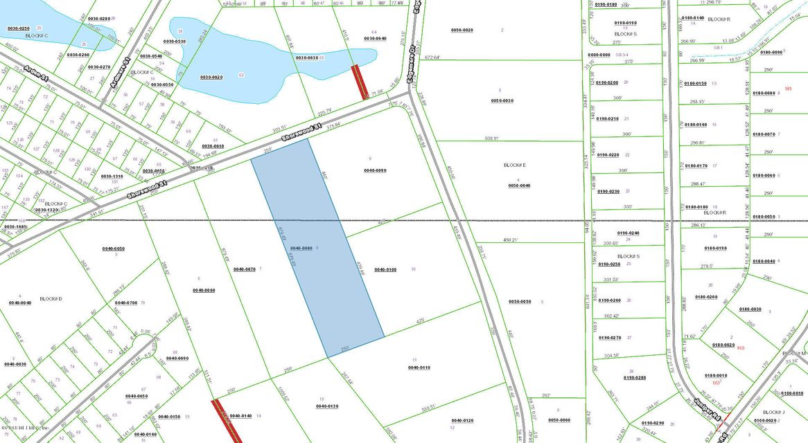 160 SHOREWOOD, GEORGETOWN, FLORIDA 32139, ,Vacant land,For sale,SHOREWOOD,922098