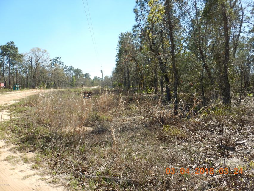 2ND, INTERLACHEN, FLORIDA 32148, ,Vacant land,For sale,2ND,923159