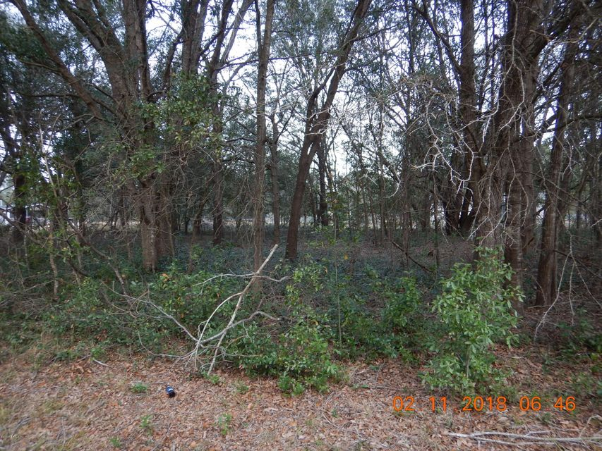 DAWN, INTERLACHEN, FLORIDA 32148, ,Vacant land,For sale,DAWN,924337