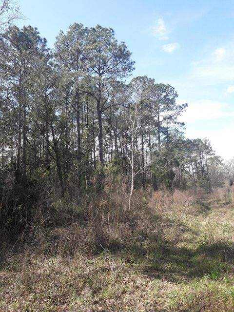 HEWITT, JACKSONVILLE, FLORIDA 32244, ,Vacant land,For sale,HEWITT,923067