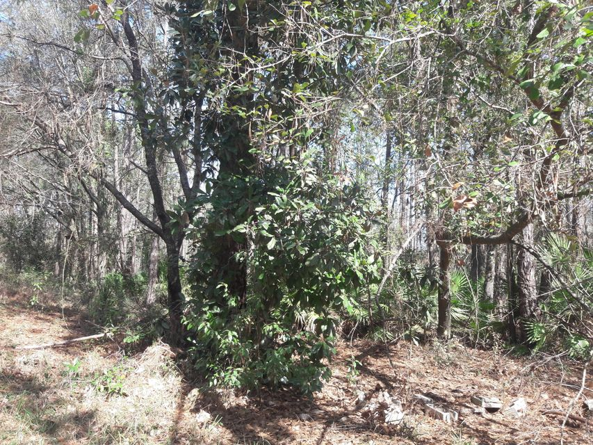 MAPLE, JACKSONVILLE, FLORIDA 32244, ,Vacant land,For sale,MAPLE,923064