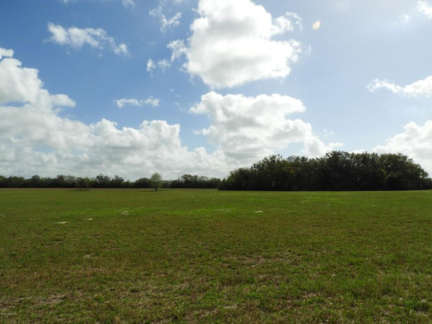 86TH, WILLISTON, FLORIDA 32696, ,Vacant land,For sale,86TH,924805