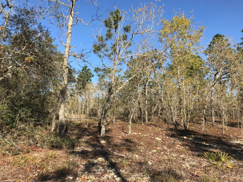 0 58TH, INTERLACHEN, FLORIDA 32148, ,Vacant land,For sale,58TH,924354