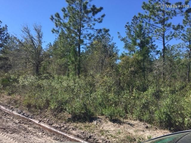 14030 GAME, SANDERSON, FLORIDA 32087, ,Vacant land,For sale,GAME,924991