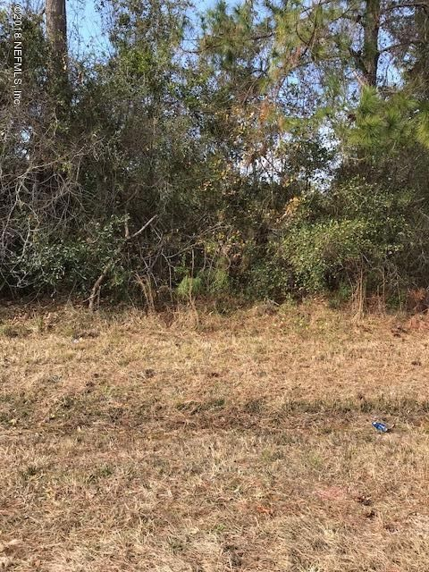 14156 YELLOW BLUFF, JACKSONVILLE, FLORIDA 32226, ,Vacant land,For sale,YELLOW BLUFF,914668