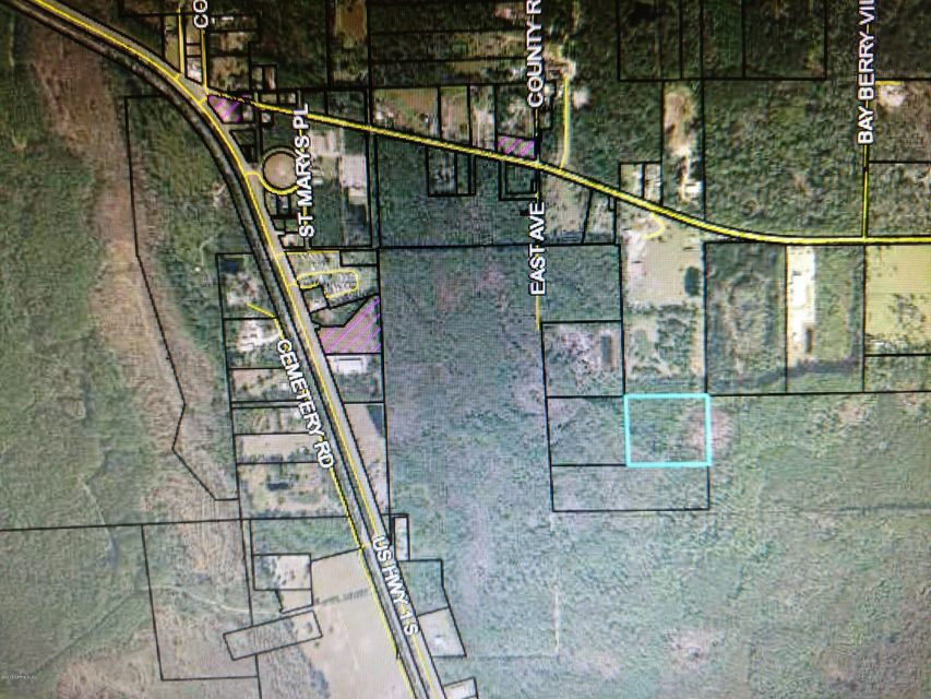 OFF S OLD DIXIE HIGHWAY, BUNNELL, FLORIDA 32110, ,Vacant land,For sale,S OLD DIXIE HIGHWAY,926460