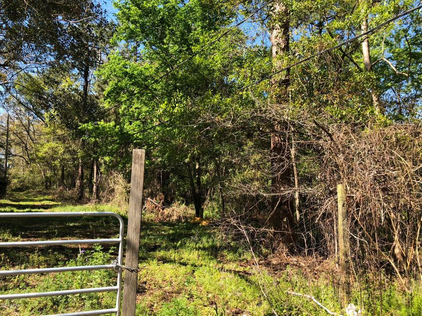 0 MARY ROSE, JACKSONVILLE, FLORIDA 32208, ,Vacant land,For sale,MARY ROSE,926783