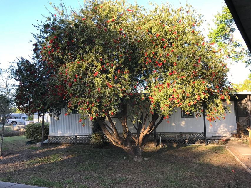 156 SMITH, SATSUMA, FLORIDA 32189, 2 Bedrooms Bedrooms, ,2 BathroomsBathrooms,Residential - mobile home,For sale,SMITH,928720