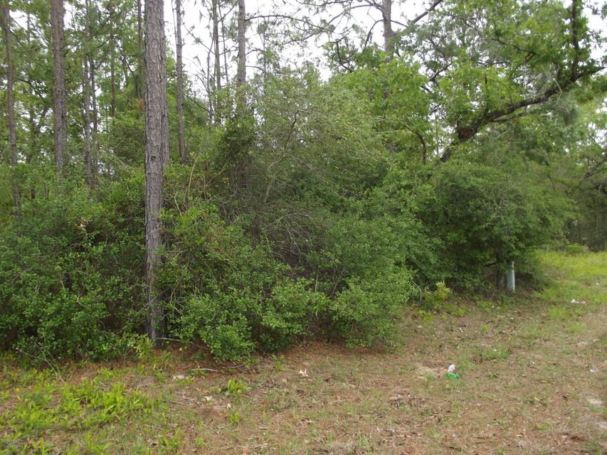 00 COUNTY RD 315, INTERLACHEN, FLORIDA 32148, ,Vacant land,For sale,COUNTY RD 315,930236
