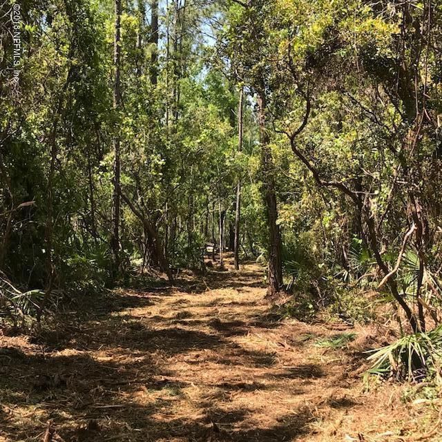 184 PIONEER- BOSTWICK- FLORIDA 32043, ,Vacant land,For sale,PIONEER,934832