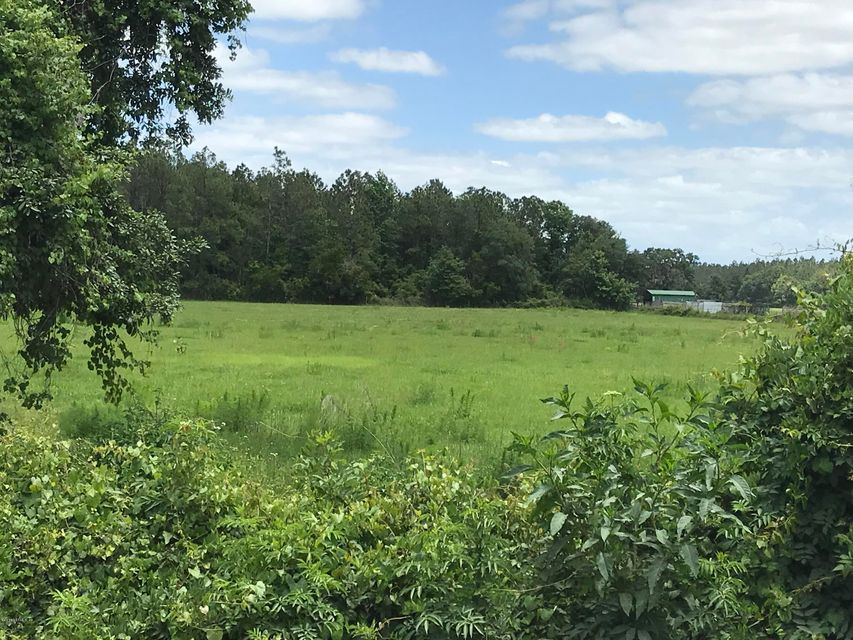 496 MILLICAN, PALATKA, FLORIDA 32177, ,Vacant land,For sale,MILLICAN,934702