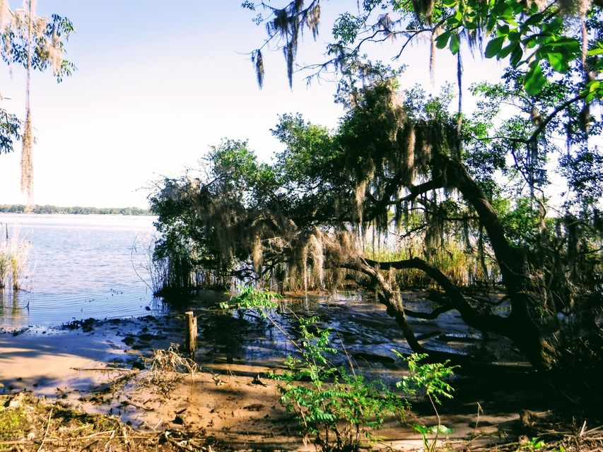 121 RIVERS EDGE, EAST PALATKA, FLORIDA 32131, ,Vacant land,For sale,RIVERS EDGE,926382