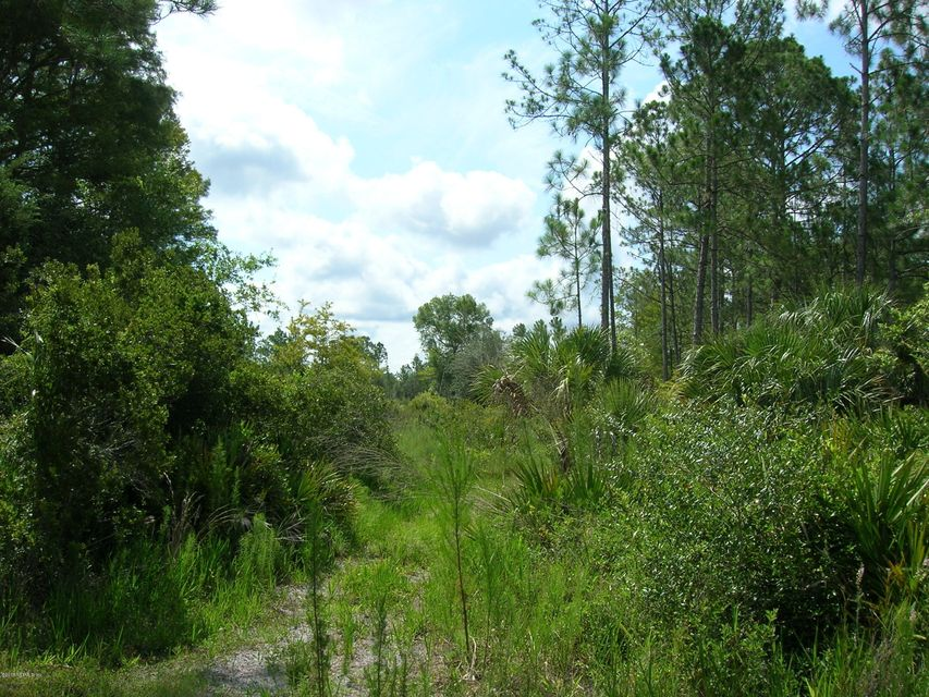 TBD SW 50TH, CEDAR KEY, FLORIDA 32625, ,Vacant land,For sale,SW 50TH,935787