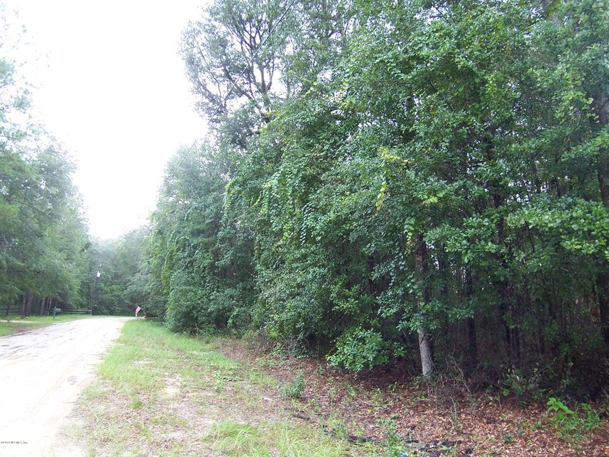 0000 PLUM, MELROSE, FLORIDA 32666, ,Vacant land,For sale,PLUM,934673
