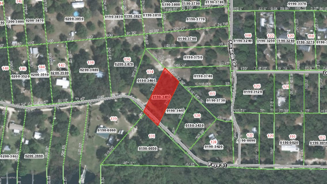 000 FAYE, HAWTHORNE, FLORIDA 32640, ,Vacant land,For sale,FAYE,936518