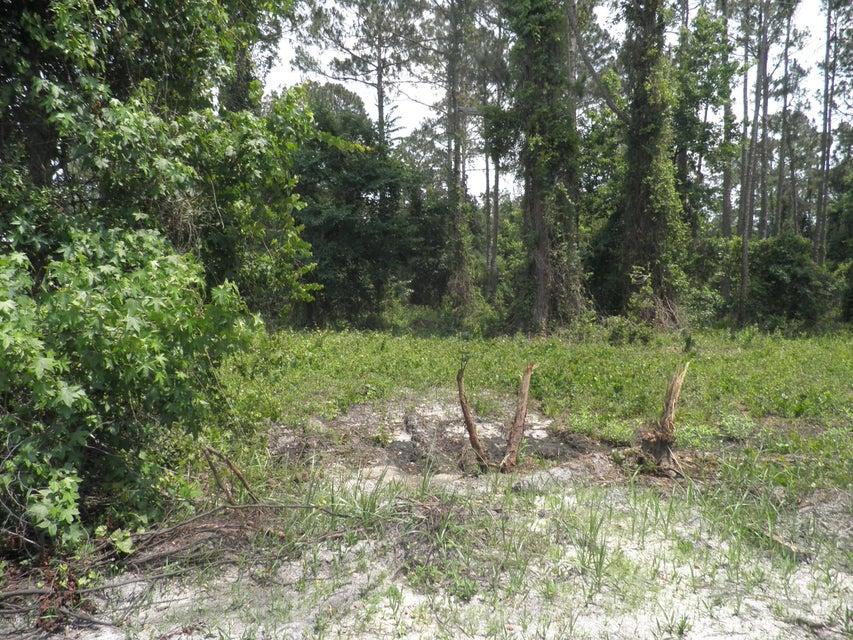 122+124 CAROL, CRESCENT CITY, FLORIDA 32112, ,Vacant land,For sale,CAROL,935549