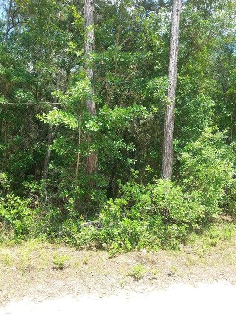 000 BRETT ST, INTERLACHEN, FLORIDA 32148, ,Vacant land,For sale,BRETT ST,937127