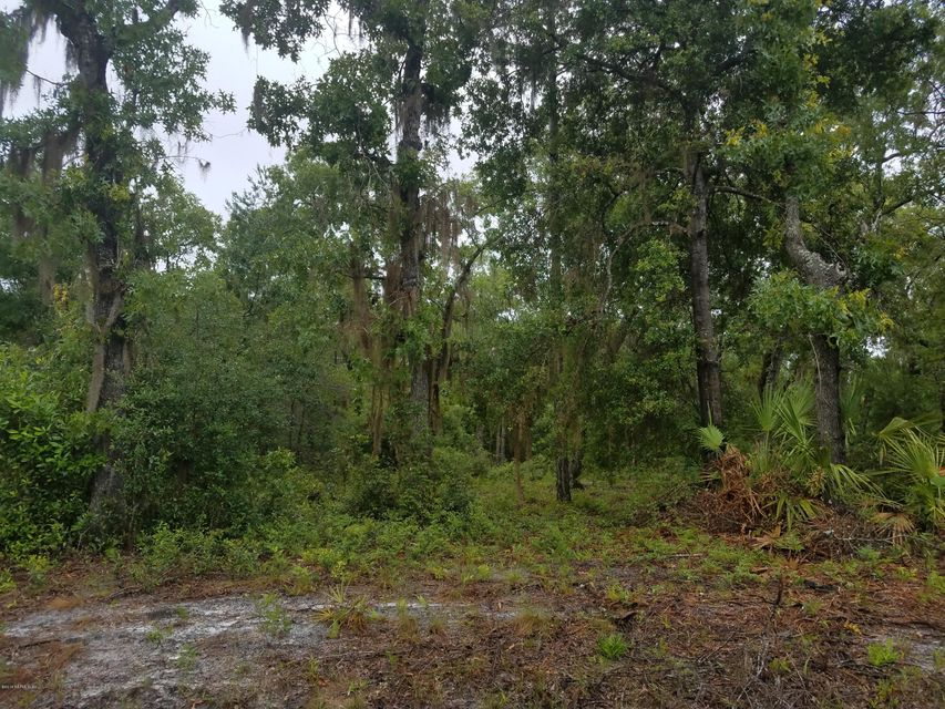 658 HILLSBOROUGH, FLORAHOME, FLORIDA 32140, ,Vacant land,For sale,HILLSBOROUGH,938742