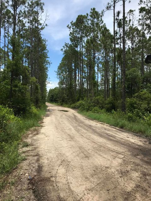 132 MARION- PALATKA- FLORIDA 32177, ,Vacant land,For sale,MARION,938874