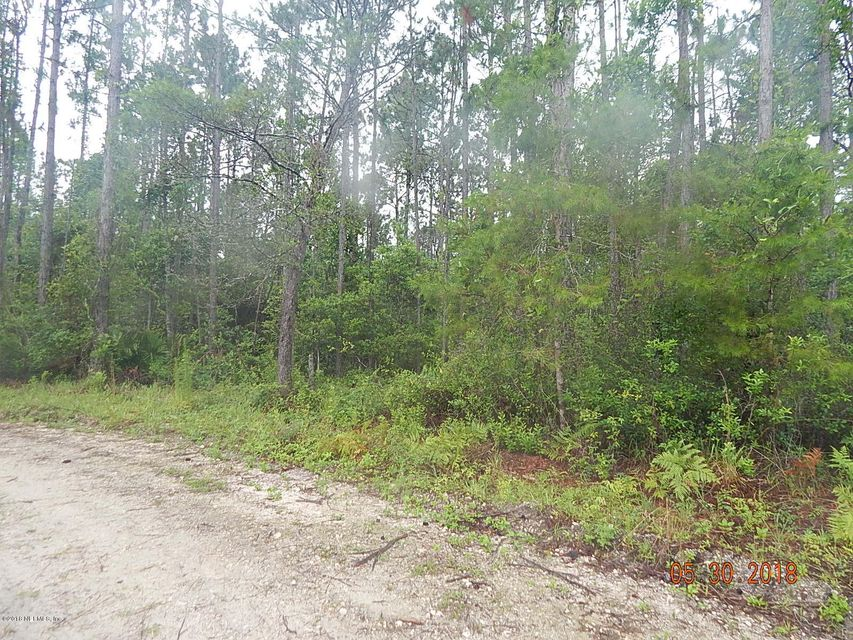 129 SHAGGY, PALATKA, FLORIDA 32177, ,Vacant land,For sale,SHAGGY,939153
