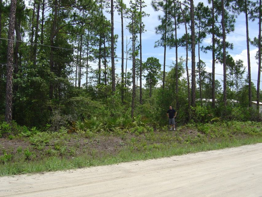 2535 SUNFLOWER- MIDDLEBURG- FLORIDA 32068, ,Vacant land,For sale,SUNFLOWER,939812