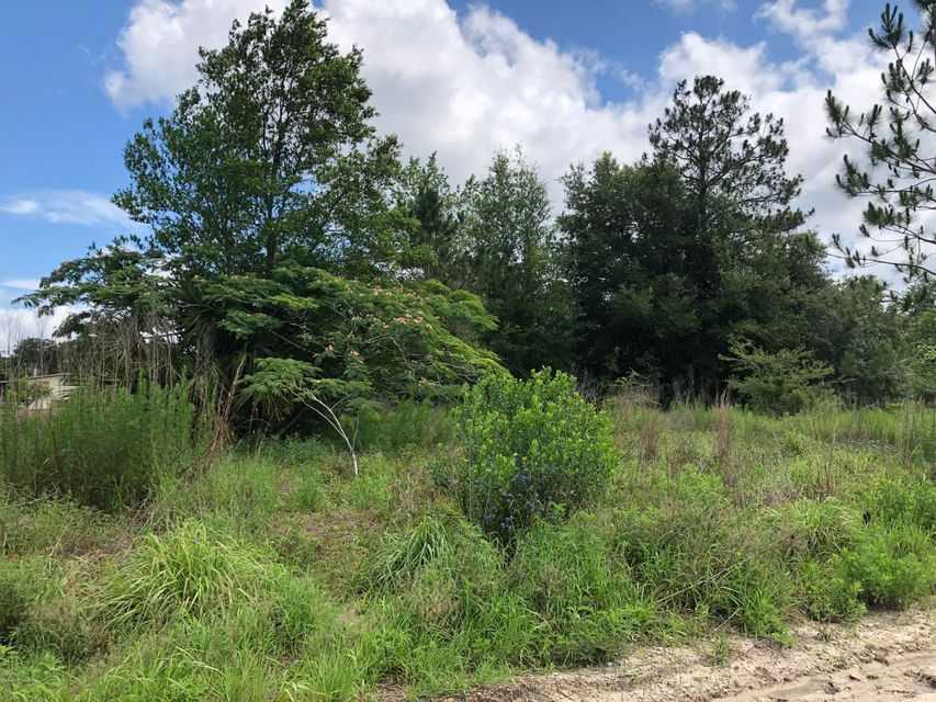 00 OSCEOLA, SATSUMA, FLORIDA 32189, ,Vacant land,For sale,OSCEOLA,942987