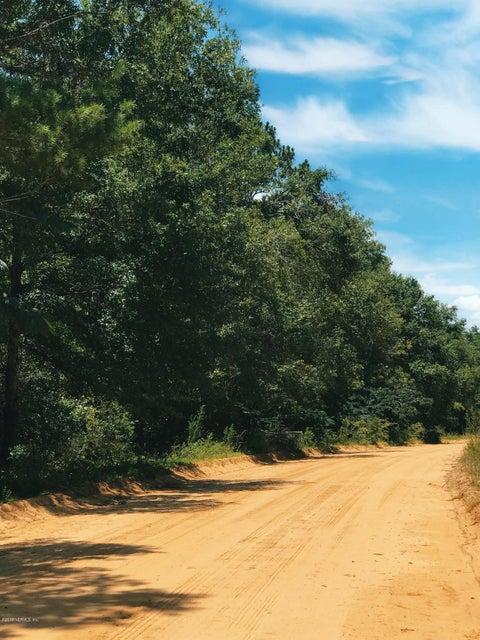 217 PUTNAM, INTERLACHEN, FLORIDA 32148, ,Vacant land,For sale,PUTNAM,943320