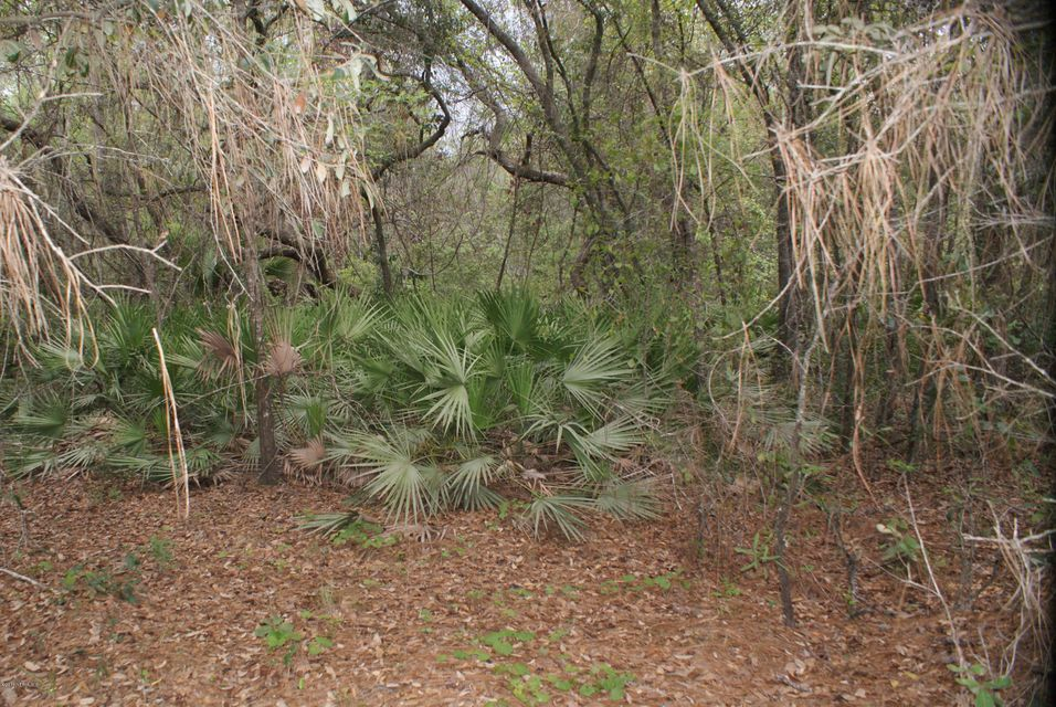 694 COUSINTOWN, INTERLACHEN, FLORIDA 32148, ,Vacant land,For sale,COUSINTOWN,943996