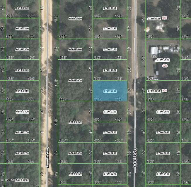 00 MALTAS, INTERLACHEN, FLORIDA 32148, ,Vacant land,For sale,MALTAS,943958
